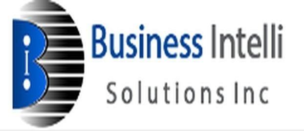 Business Intelli Solutions Inc