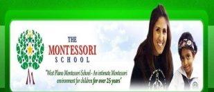 West Plano Montessori School-Plano-Texas