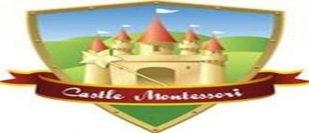 Castle Montessori of McKinney-McKinney-Texas